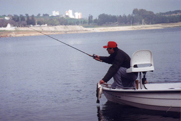 Embalse de Bornos – pesca deportiva de black bass