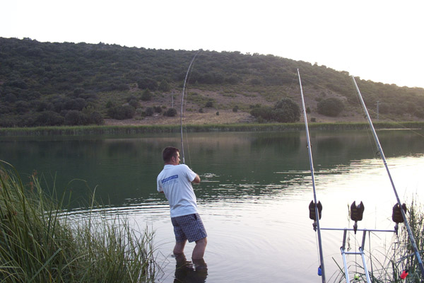Embalse de La Fernandina – carpfishing