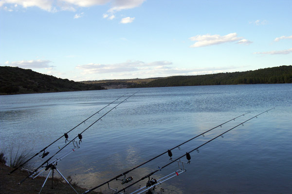 Embalse de Guadalmena – pesca deportiva carpfishing