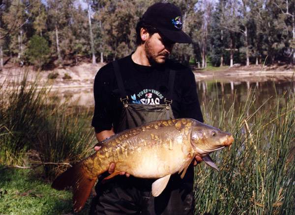 Embalse de Los Machos – pesca deportiva carpfishing