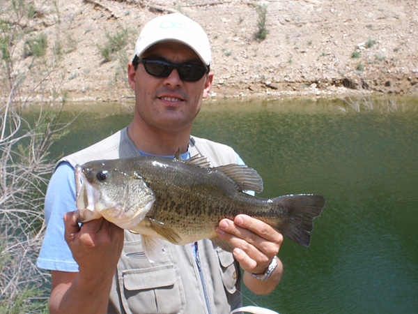Embalse de Béznar – pesca deportiva black bass